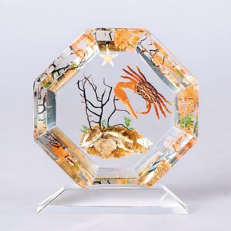 千年形成的美丽 天然名品琥珀最为珍稀